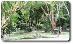 Entrance to Botanic Gardens, Cooktown