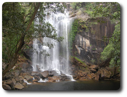 Nature Adventure And Discovery Explore Cooktown And