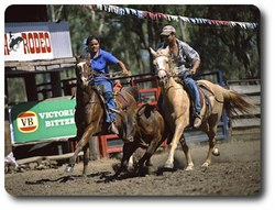 Laura rodeo riders