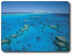 Ribbon Reefs, Queensland. Courtesy of Tourism Queensland