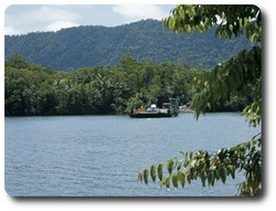 Car ferry, Daintree River. Courtesy of Tourism Queensland